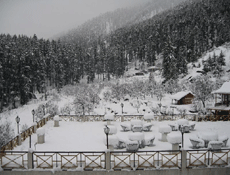 Feel Heaven in Manali