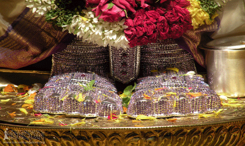 Devoted Tour of Tirupati Balaji