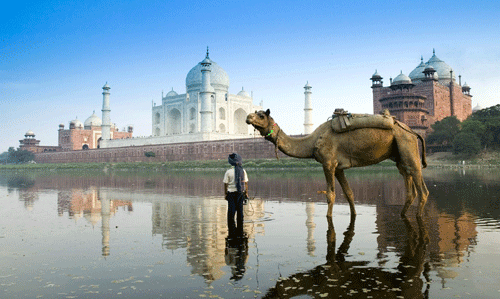 Adore the Beauty of Taj Mahal