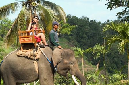 Limitless Family Masti @ Bali
