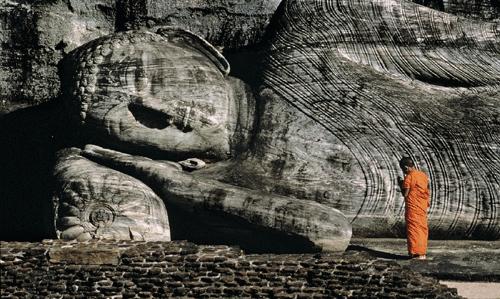 Exculsive Srilankan Safari